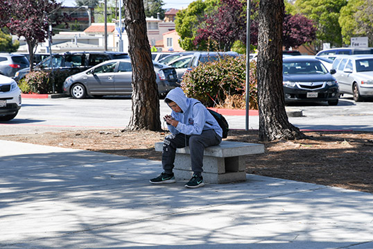 Image of a person on their phone sitting on a concrete bench in a tree-shaded area