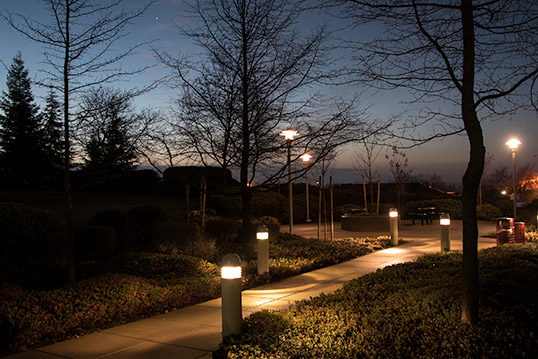 Image of well-lit pathway adjacent hedges and trees at dusk