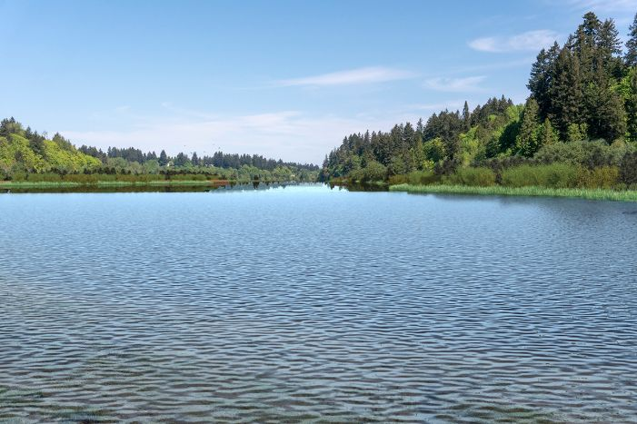 A visual simulation of the Estuary Alternative, looking north from the dock at the south end of the interpretive center. The visual simulation was generated to represent the potential views in the Middle Basin from the dock or boardwalks that would be constructed along the shoreline. The Middle Basin is full of water there is lush vegetated habitat along the shorelines.