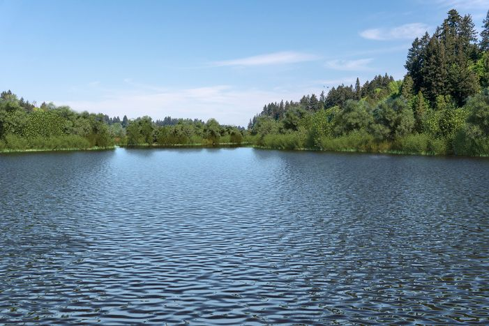 A visual simulation of the Managed Lake, looking north from the dock at the south end of the interpretive center. The visual simulation was generated to represent the potential views in the Middle Basin from the dock or boardwalks that would be constructed along the shoreline. The Middle Basin is full of water there is lush green habitat along the shorelines.